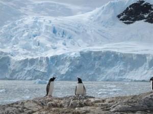 Antarctica warming man-made, say scientists