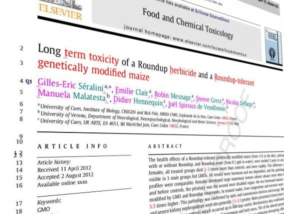 GM maize and cancer study retracted – experts respond