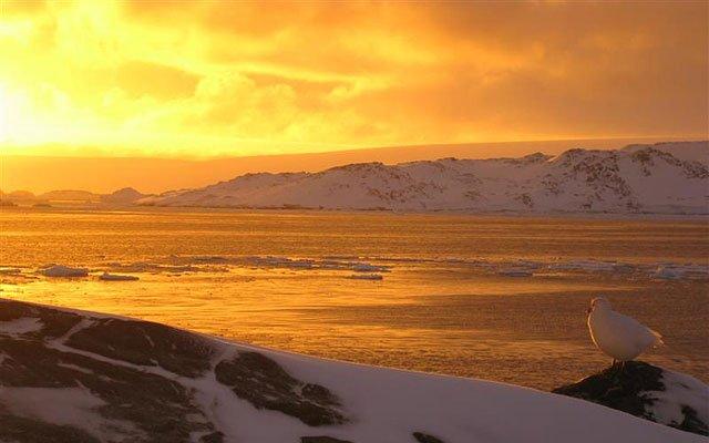 Antarctica Horizons