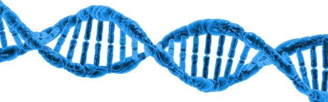 DNA - Public Domain