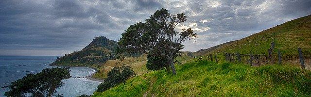 NZ Environment Public Domain