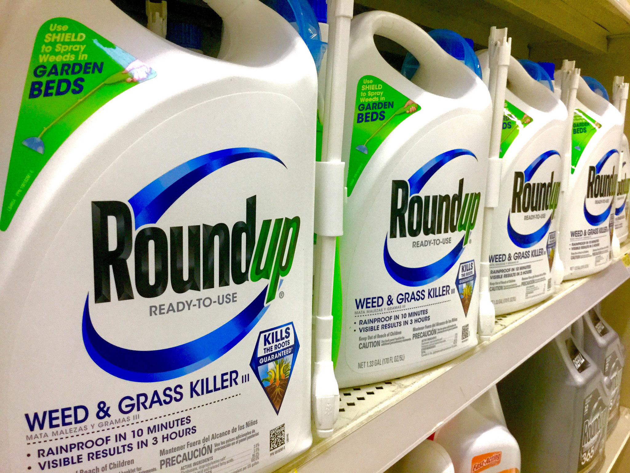Monsanto loses glyphosate cancer case – Expert Reaction