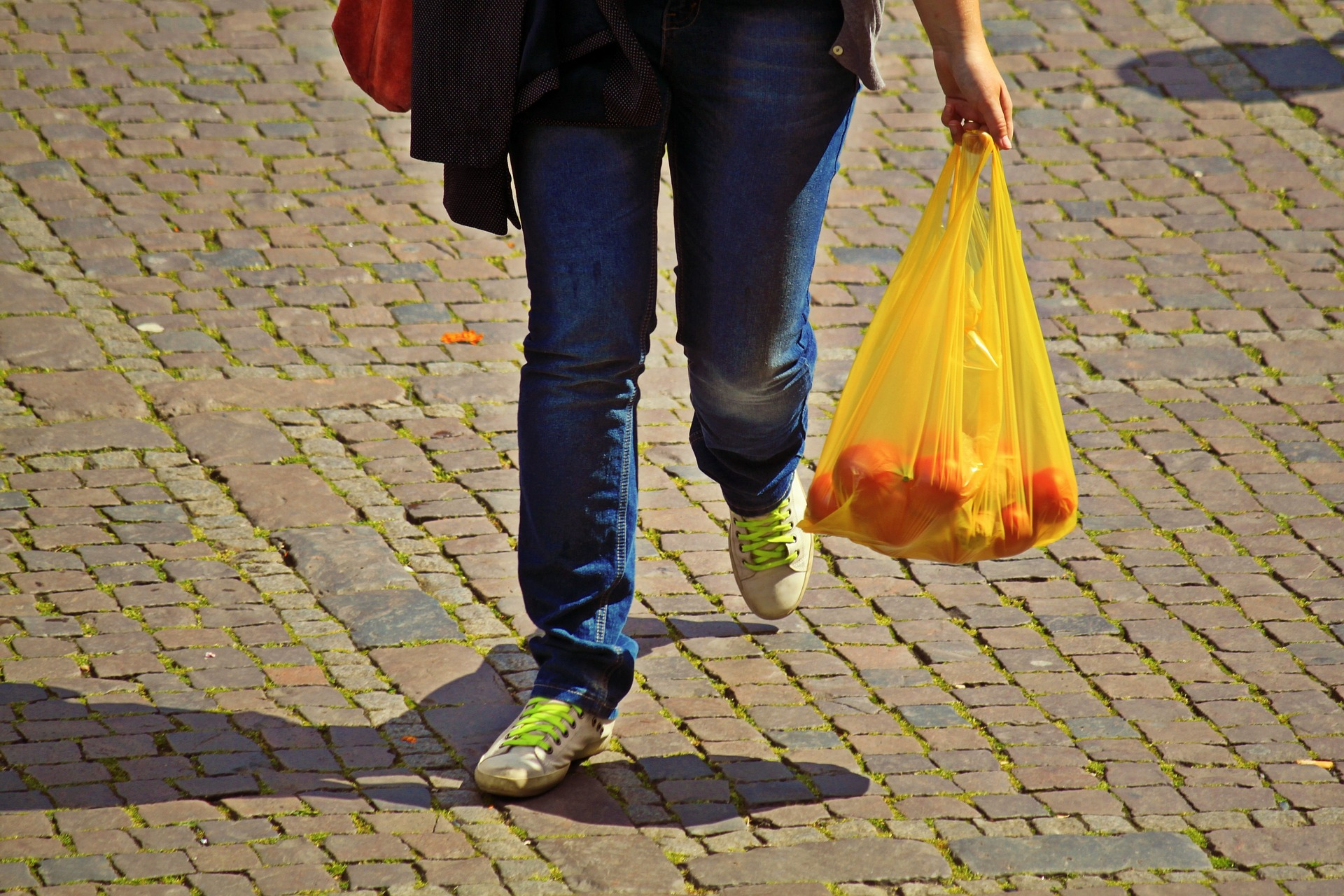 Single use plastic bag ban – Expert Reaction