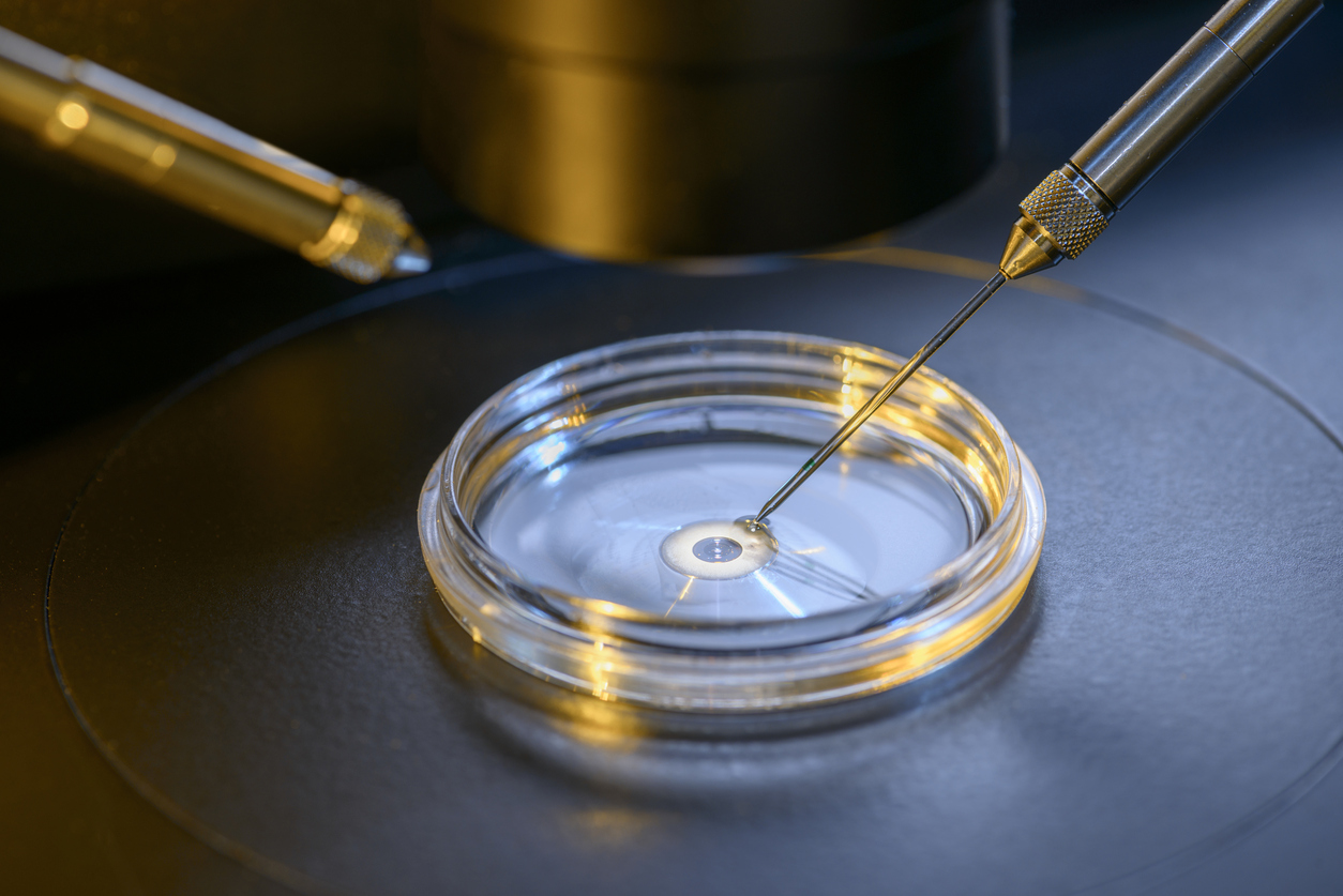 IVF 'add-on' is painful and ineffective – In the News