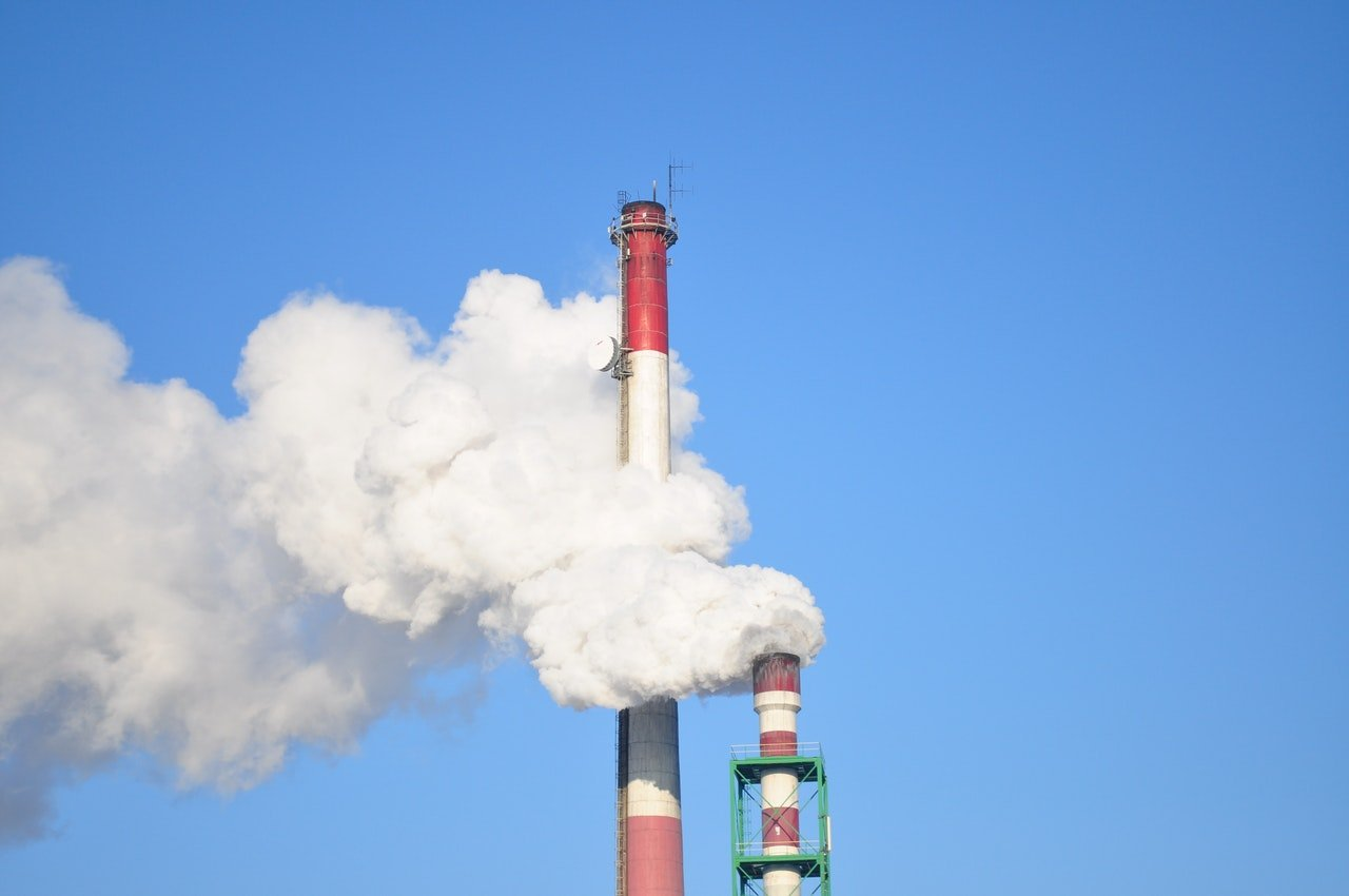 Where is NZ's carbon capital? – Expert Reaction