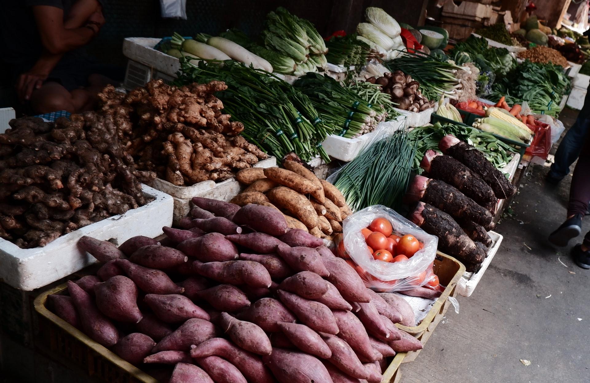 Climate change threatens kūmara crops – Expert Reaction