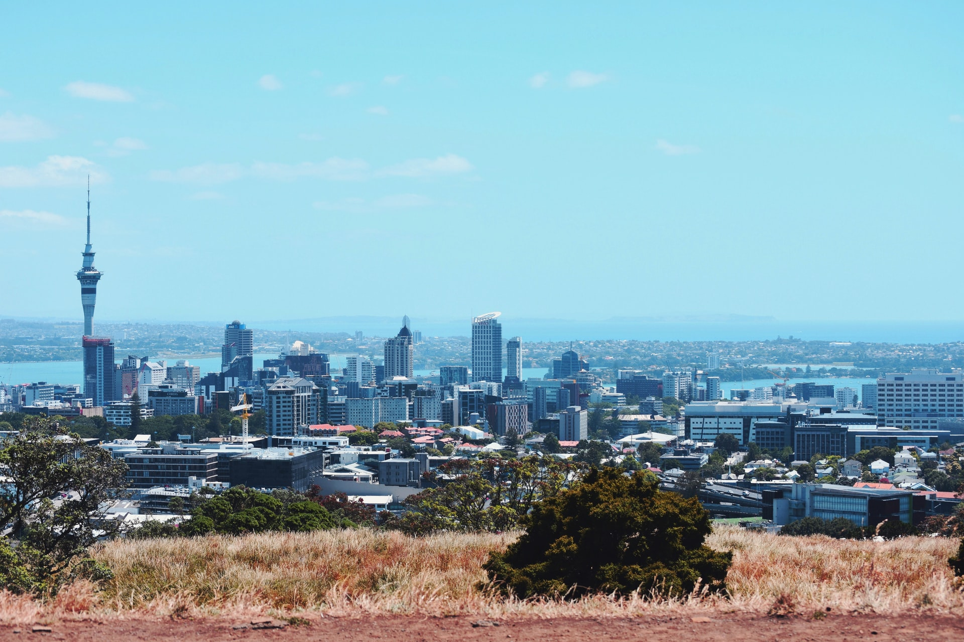 Auckland moves to Alert Level 1 – Expert Reaction