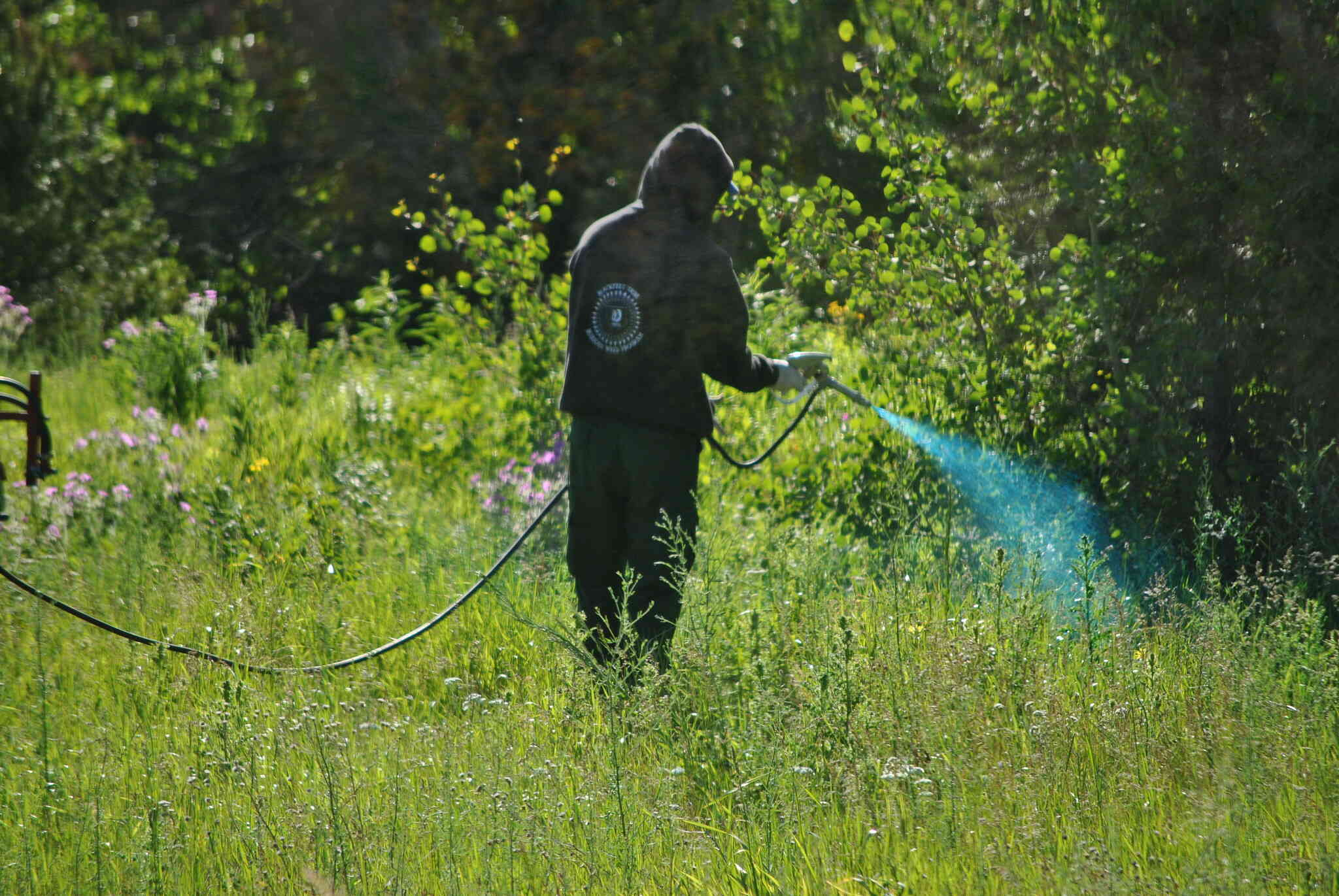 Input on glyphosate sought – Expert Reaction