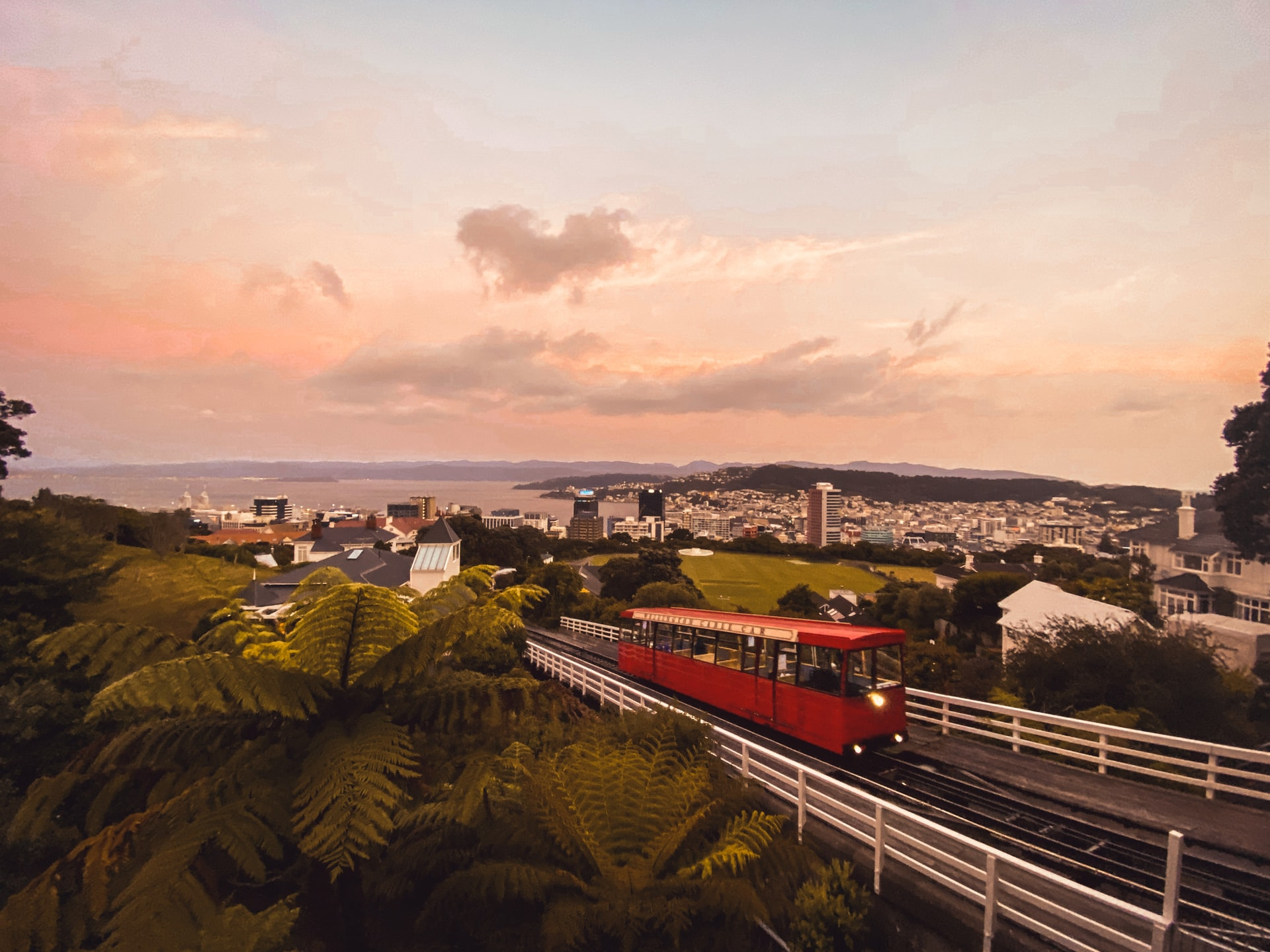 Covid-19 case comes to Wellington – Expert Reaction